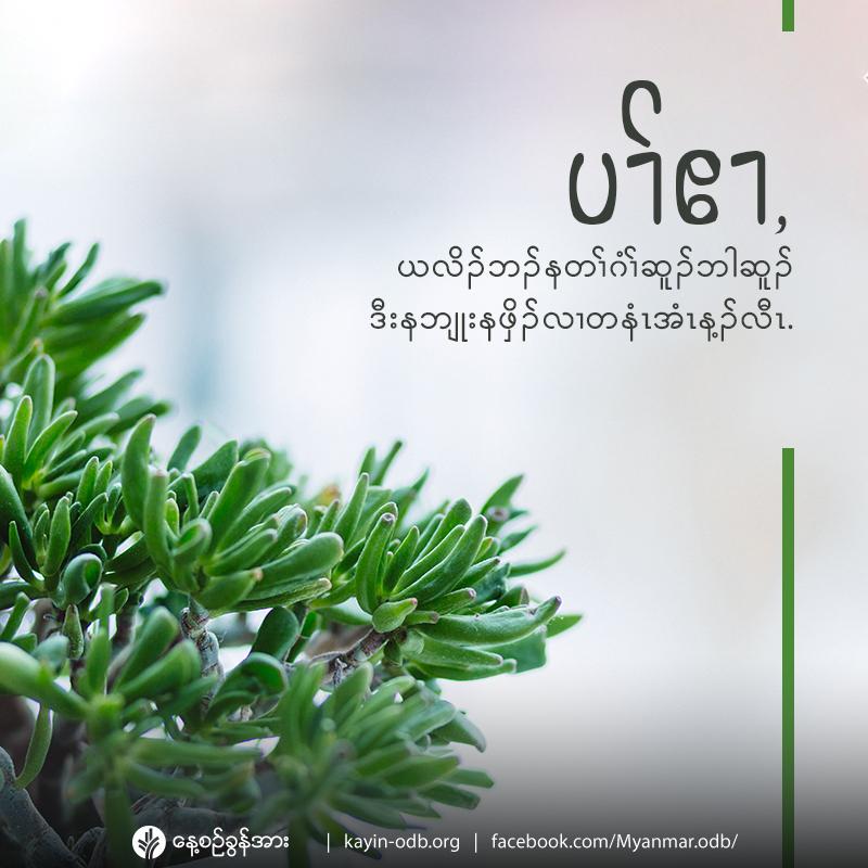 share-odb-2020-01-30-ky