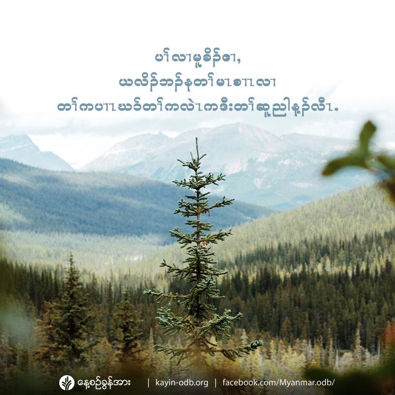 share_odb_2020-02-28-ky