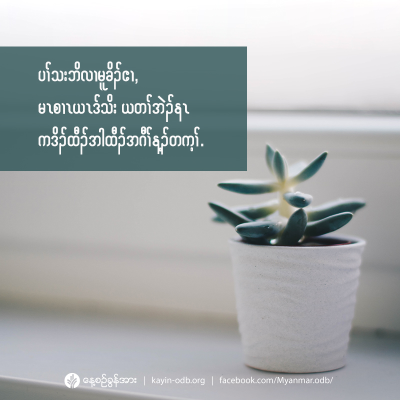 share_odb_2020-11-13-ky