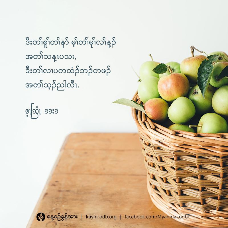 share_odb_2020-11-15-ky
