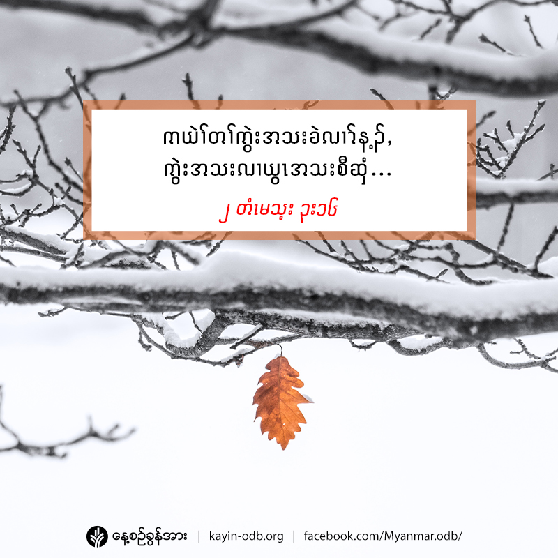 share_odb_2020-12-22-ky