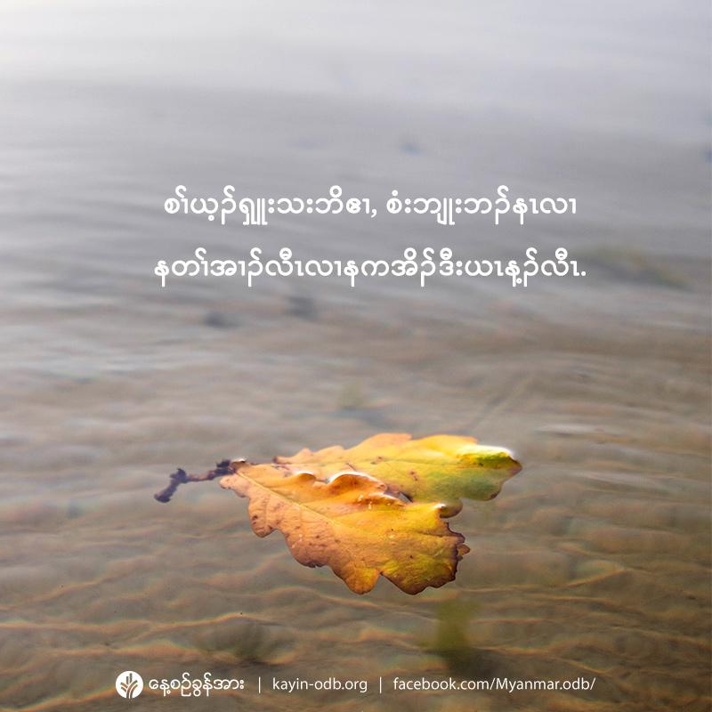 share_odb_2021-01-02-ky