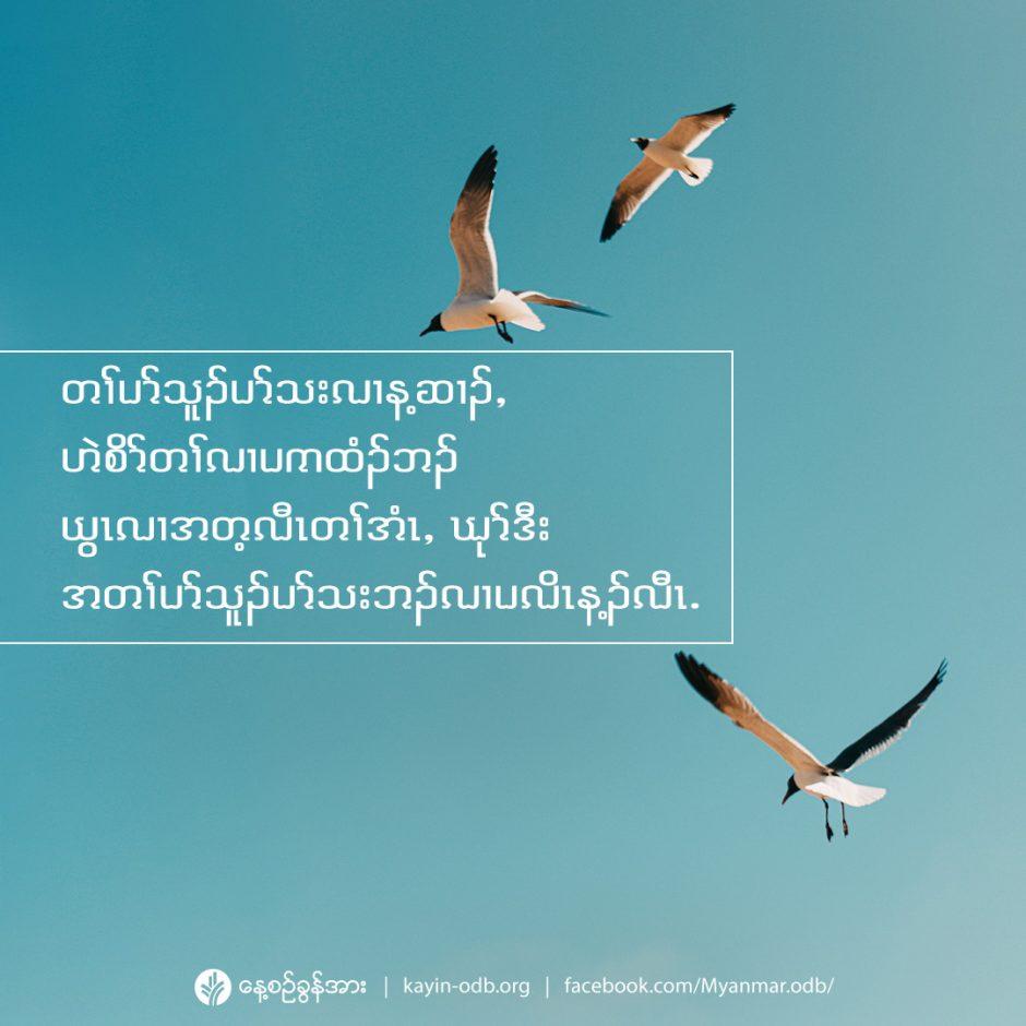 share_odb_2021-05-09-ky