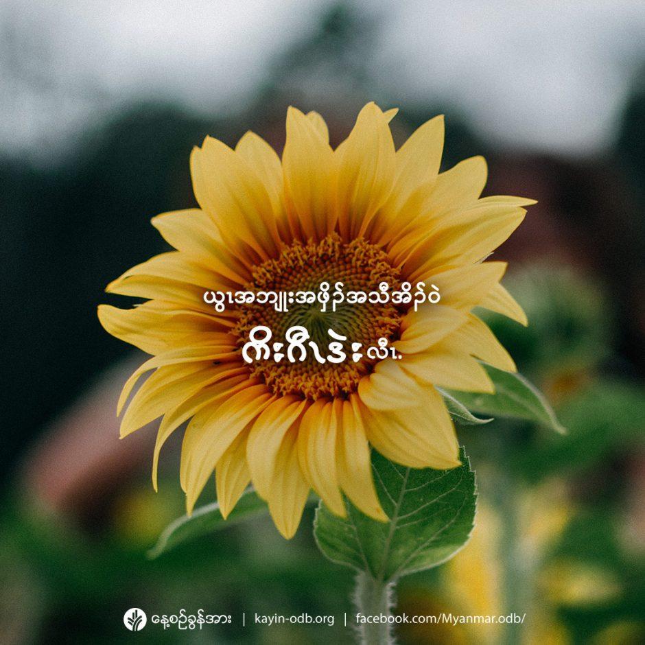 share_odb_2021-08-30-ky